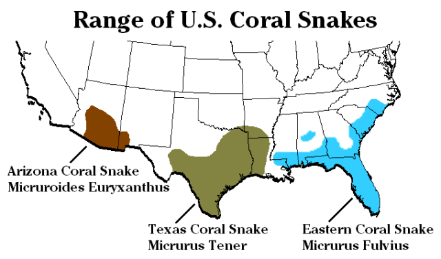 Is This Snake Venomous What To Look For When Dealing With Snakes - Map of poisonous snakes in us