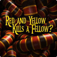 Red and Yellow Kills a Fellow? Your Identification Guide ...